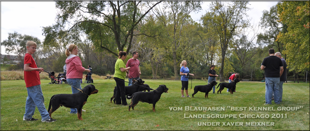 Landesgruppe Chicago 2011 Best Kennel Group